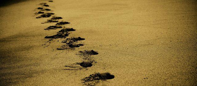 Caminhe por esse Caminho