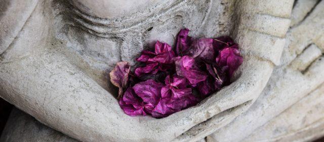 Meditação Compassiva (Metta ou Loving Kindness Meditation)